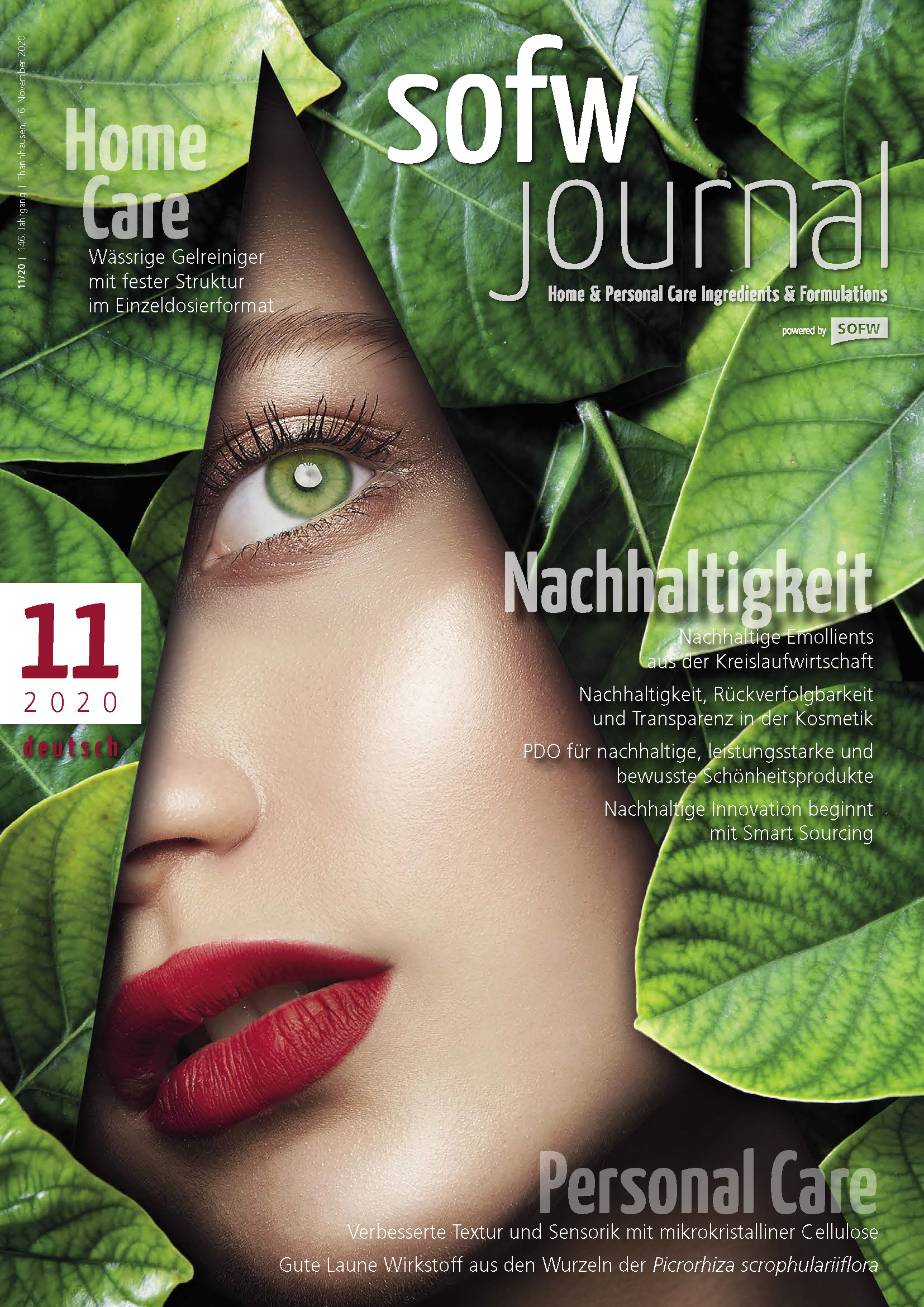 sofw_2011_ger_cover