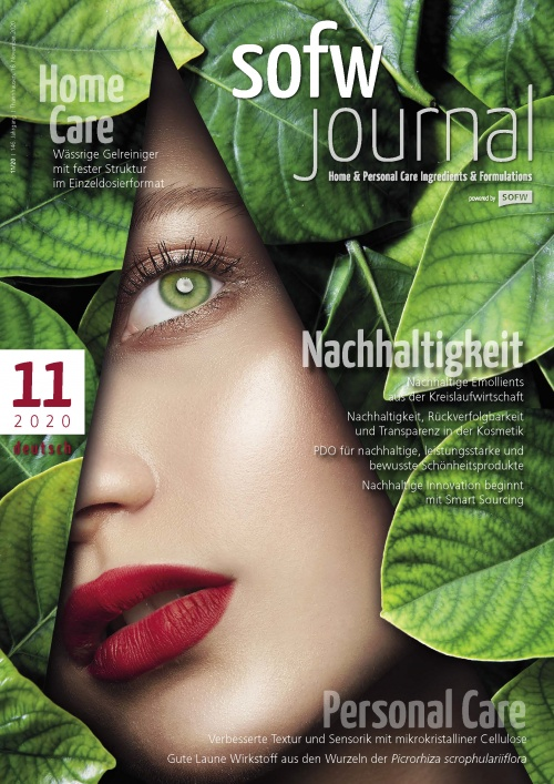 sofw_2011_ger_cover_1515779487